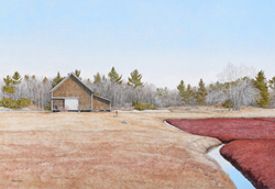 Bright red cranberry bog with small shed abutting forest behind it. Link to Arthur Moniz Gallery Cranberry Bogs Prints Gallery 8