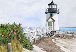 Rogosa rose covered walkway leading to Brant Point Lighthouse, Nantucket MA. Link to Arthur Moniz Gallery Lighthouse Prints Gallery 5